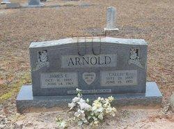 Callie B Arnold
