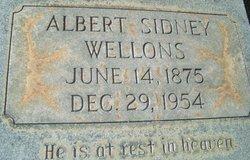 Albert Sidney Wellons