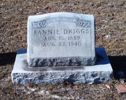 Sarah Frances Fannie <i>Boatman</i> Driggs