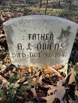 A. J. Owens