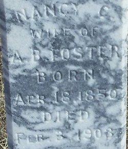 Nancy Catherine <i>Brewer</i> Foster