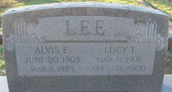 Lucy T Lee