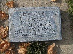 Sharon Burrows