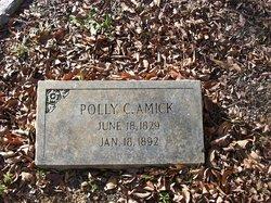 Mary Catherine Polly <i>Cromer</i> Amick