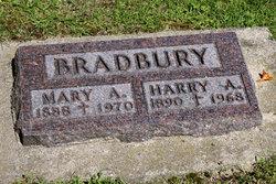 Harry A Bradbury