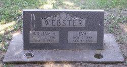William A Webster
