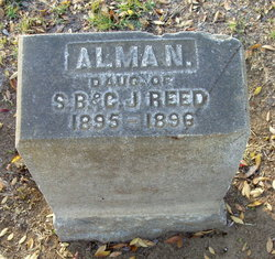 Alma N Reed