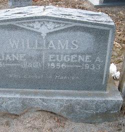Eugene Amelius Civil War Williams