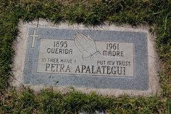 Petra <i>Camacho</i> Apalategui