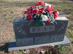 Anna Pearl <i>King</i> Bean