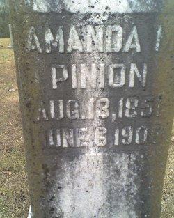 Amanda M. <i>Sloan</i> Pinion