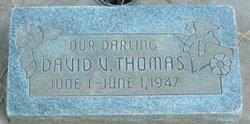 David V Thomas
