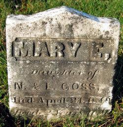 Mary E Goss