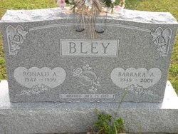 Ronald A Bley