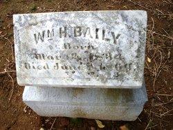 William H Baily
