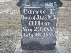 Carrie E. Allen