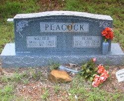 Walter Peacock