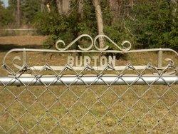 Eliza Abbey <i>Lea</i> Burton