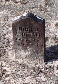 Job Jasper Jobie Anderson, Jr