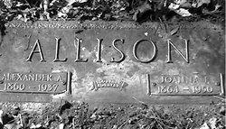 Alexander A. Allison