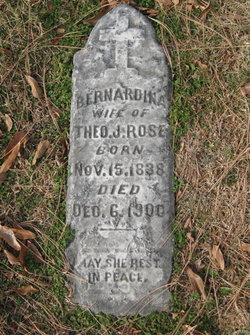 Bernardina <i>Freihage</i> Rose