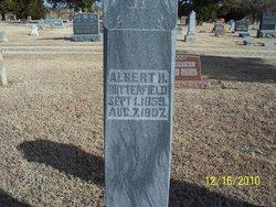 Albert Haller Butterfield