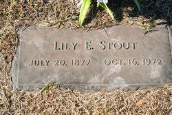 Lily E Stout
