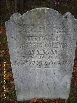 Ann Eliza Collins
