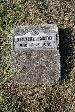 Timothy P. Meudt
