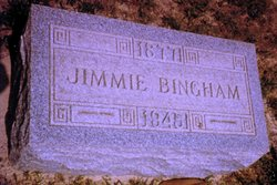 Jimmie Ethel <i>Perdue</i> Bingham
