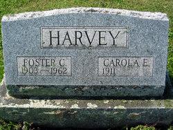 Carola E. Harvey