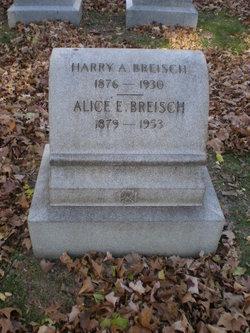 Alice E. <i>Dorn</i> Breisch