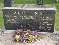 Birger Albin Asplund