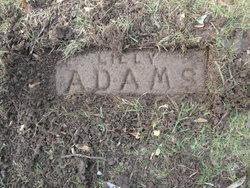 Lilly Ann <i>Manney</i> Adams