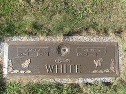 Albert A White