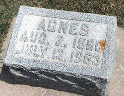 Mrs Agnes Emma <i>David</i> Bothel