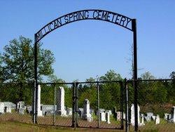 Milligan Springs Cemetery