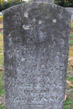 Mary V Lee