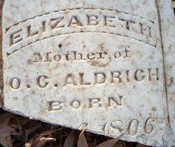 Elizabeth Aldrich