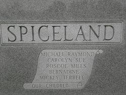 Roscoe Mills Spiceland
