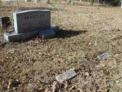 Sarah Ann Jemima <i>Travis</i> Brantley