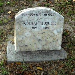 Adinah Bushell