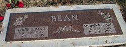 Loise Bryan <i>Head</i> Bean