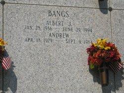 Albert Jacob Bangs