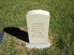 James E. Dossey