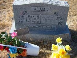 Juan M Adams, Jr.