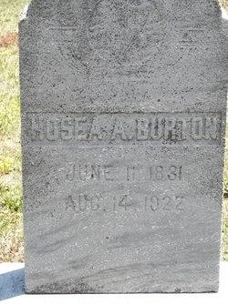 Hosea Andrew Hosea Burton