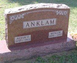 Alvin Friedrich Anklam