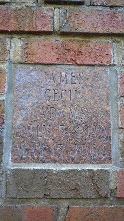 James Cecil Adams