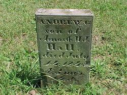 Andrew C. Hall